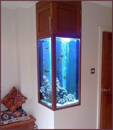 Aquário de parede vertical com peixes pequenos dentro