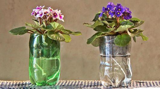 vaso sustentável