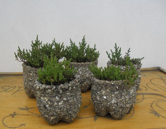 vasinho decorado planta