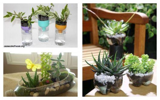 ideias para plantas e hortaliças