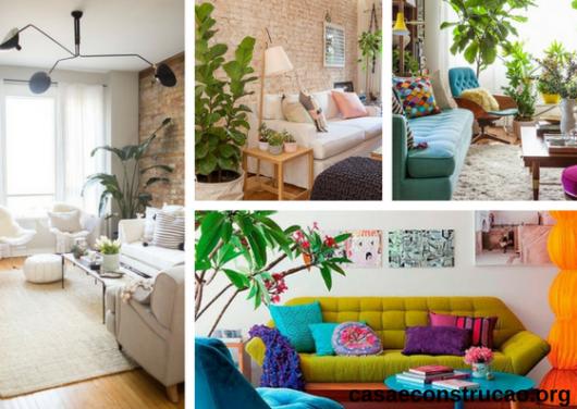vasos de plantas ao lado de sofá