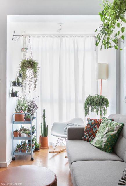 plantas suspensas em sala de estar