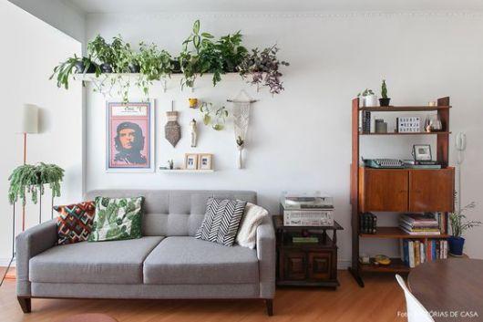 plantas em prateleira sobre sofá de sala de estar