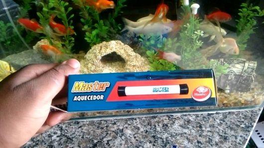termômetro para aquário de água doce