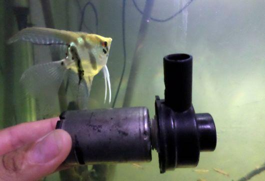 bomba de ar para aquário de água doce