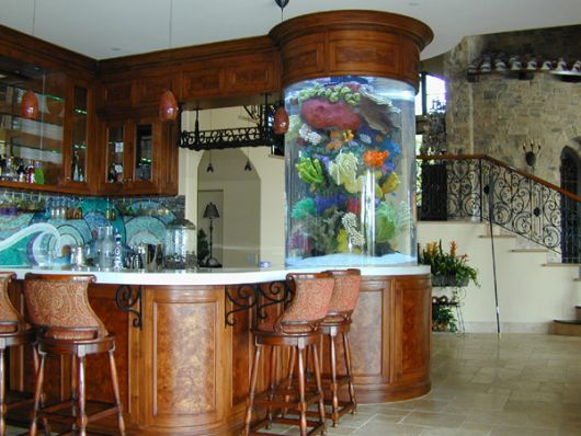 aquário de água doce na cozinha
