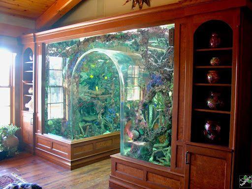 móvel planejado com aquário de água doce