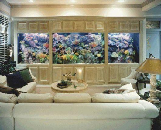 aquário marinho embutido na parede
