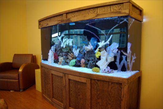 aquário marinho médio