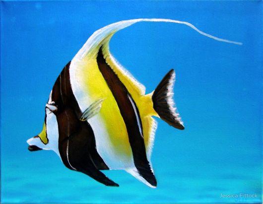 aquário marinho moorish idol