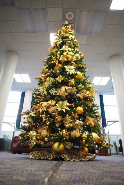árvore de natal com laços dourados