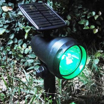 Pequena luminária solar instalada em um cantinho discreto do jardim.