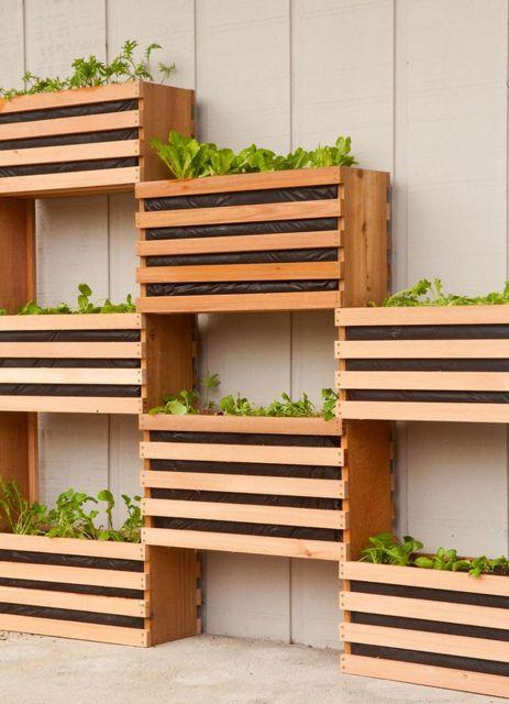 Modelo de vasos de madeira para parede com detalhes de madeira crua, sem acabamento com plantinhas verdes plantadas.