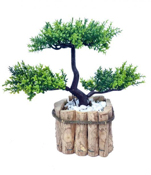 Modelo de vaso rústico de pedaços de madera reondo com bonsai plantado.