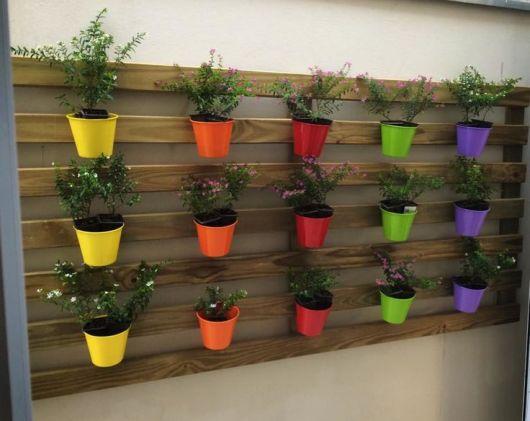 Os vasinhos coloridos dão mais vida ao jardim vertical