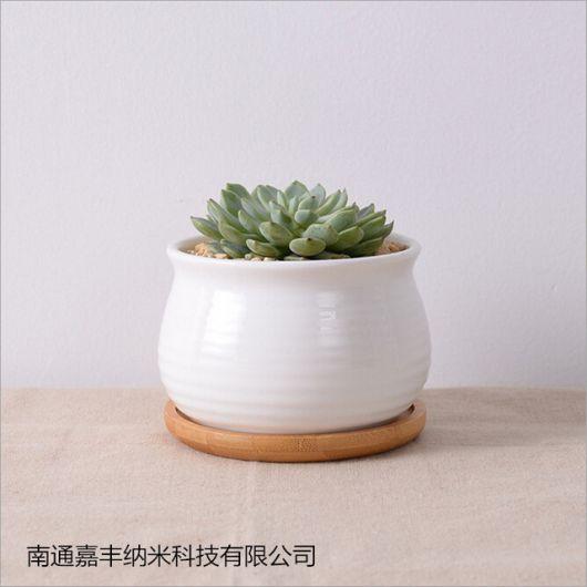 Vaso de cerâmica pequeno branco.