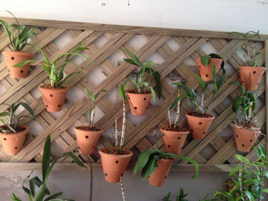Vaso de cerâmica suspenso para orquídea.