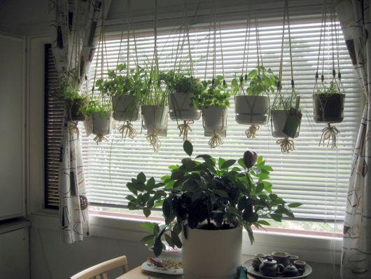 vasos pendurados na decoração com plantas de cozinha