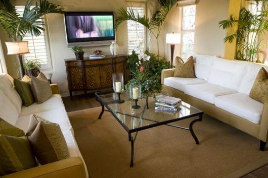 decoração com plantas na sala de estar