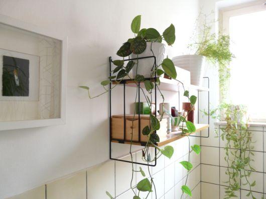 decoração com plantas em banheiro pequeno