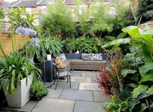 decoração com plantas com trepadeiras