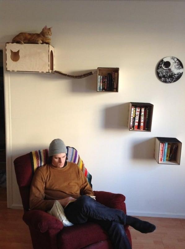 Prateleiras para gatos de papelão