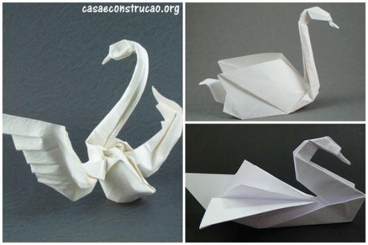 cisne simples