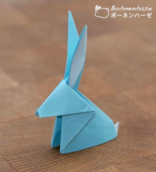 modelo de coelho