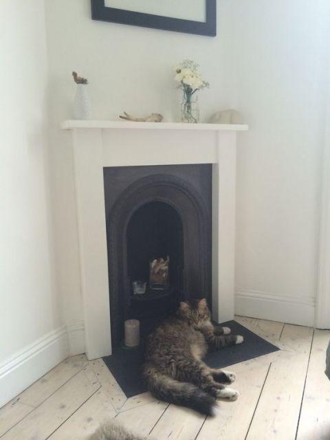 Foto de uma lareira de canto com a abertura em formato oval. Um gato descansa em frente a ela.