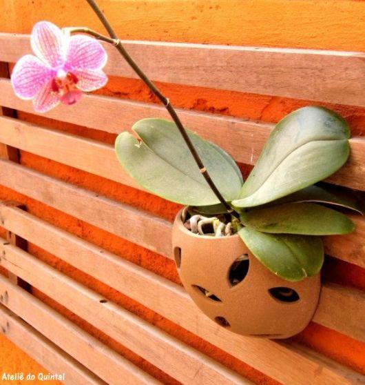 vaso de orquídea