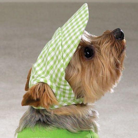 boné para cachorro verde.