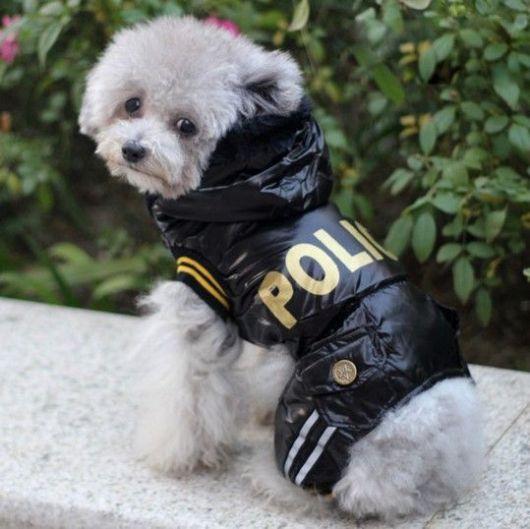 roupinha polícia