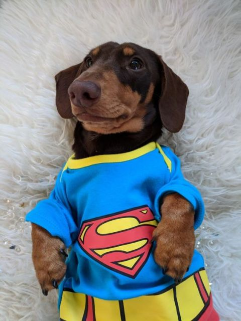roupa super herói