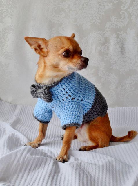 roupa de crochê pinscher