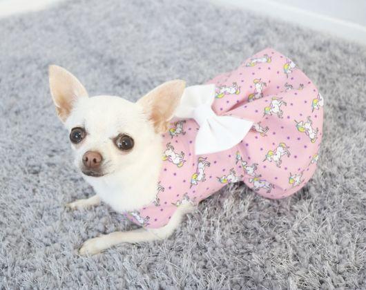 vestido de unicórnio cadela