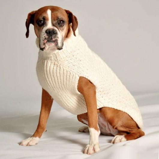 roupa de lã cachorro grande