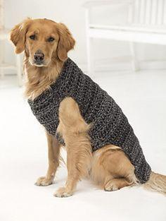 roupa de tricô cachorro grande