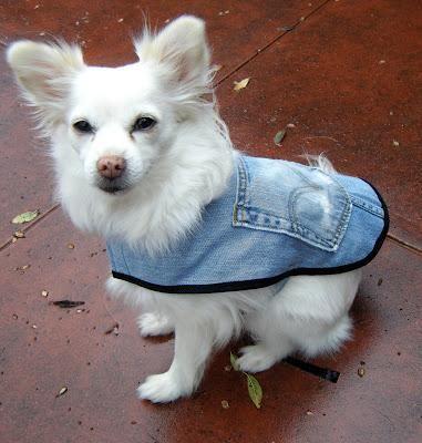 roupinha jeans