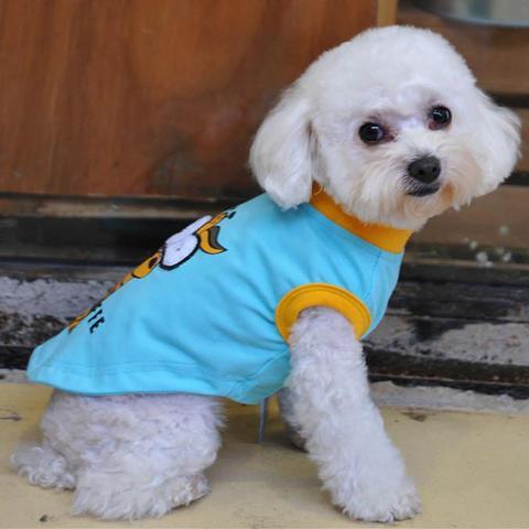 roupa algodão cachorro