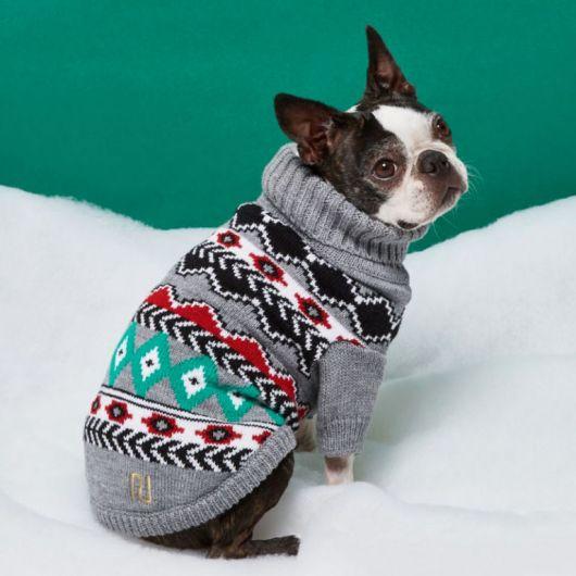 roupa inverno cachorrinho
