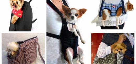 Conheça lindas bolsas para levar seu cãozinho para passear