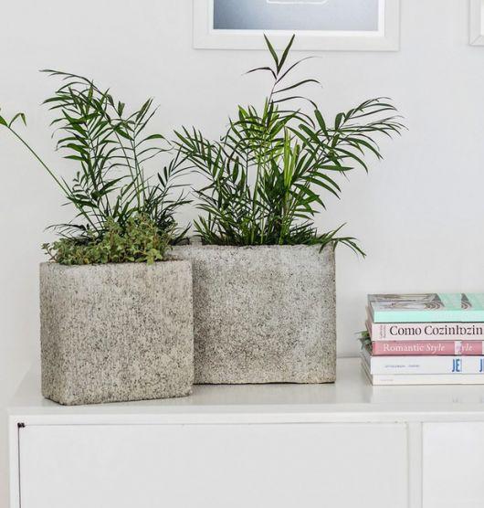 vaso de cimento bruto com planta verde.