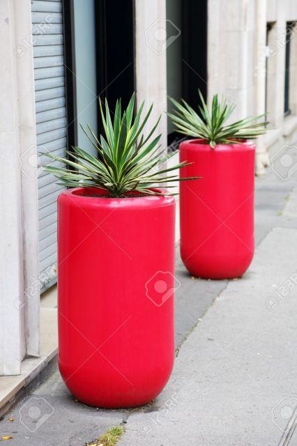 vaso de chao vermelho com plantas verdes.