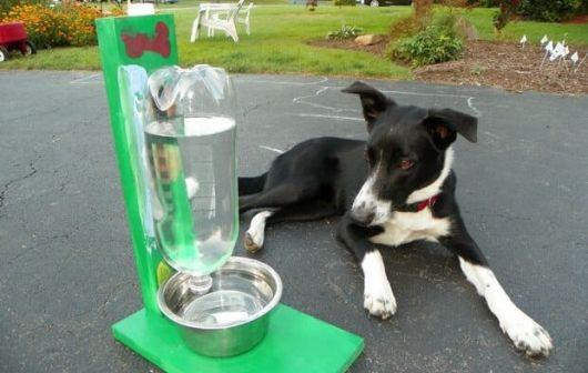 Suporte verde para bebedouro com garrafa PET