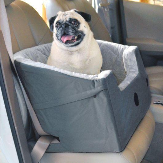 Faça alguns testes antes de passear com seu cachorro no carro
