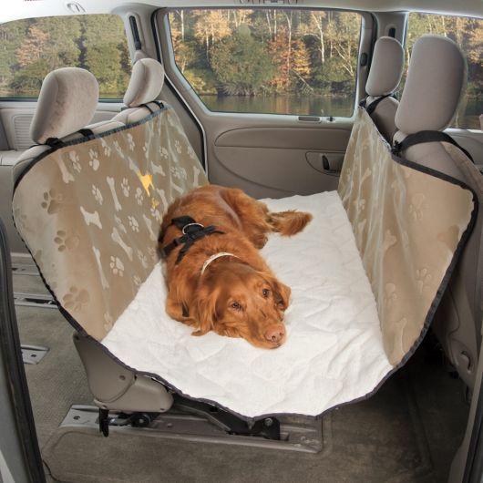 Ideia diferente para acomodar cachorros grandes no carro