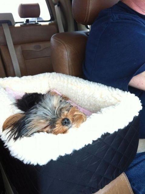 O cachorrinho pode se aconchegar na cadeirinha durante as viagens