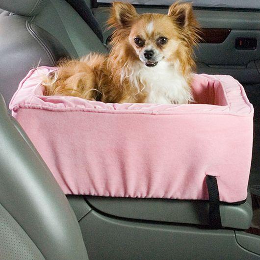 Cadeirinha especial para cachorros de pequeno porte