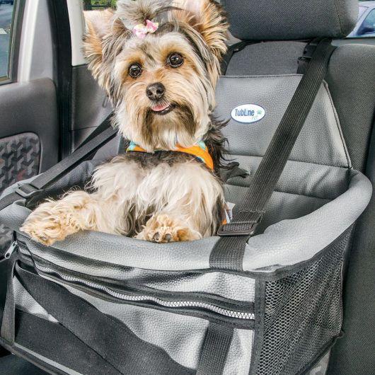 Seu cãozinho fica mais seguro com a cadeirinha