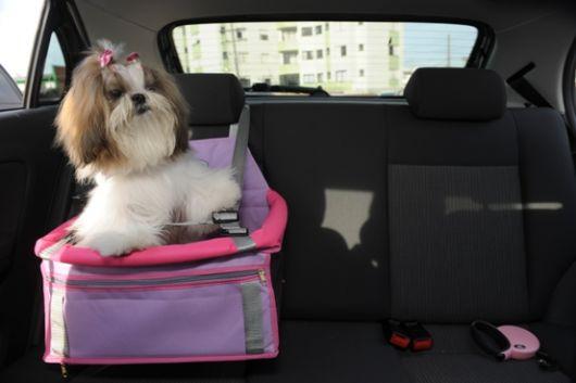 Modelo de cadeirinha rosa para cadelas